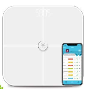 Actofit Smart Bathroom Scale